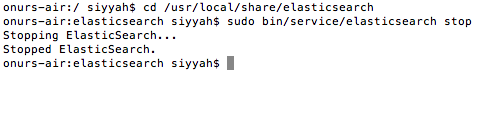 Elastic-search-install-1