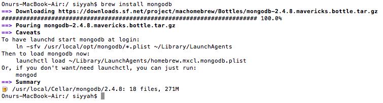 homebrew mongo setup